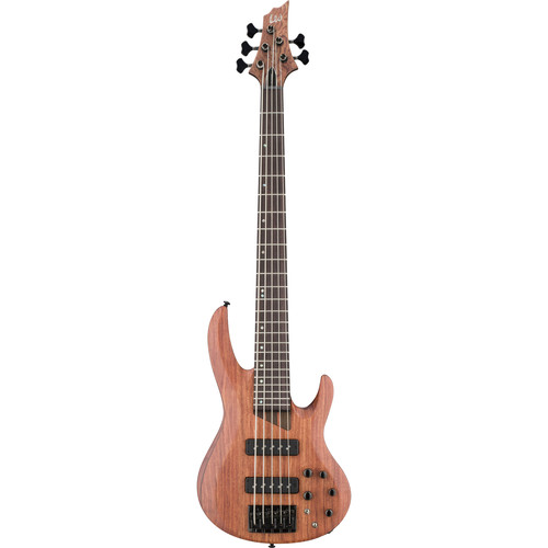ESP LTD B-1005SE 5-String Electric Bass (Natural Satin)