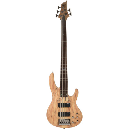 ESP LTD B-205SM 5-String Electric Bass Starter Kit (Natural Satin)
