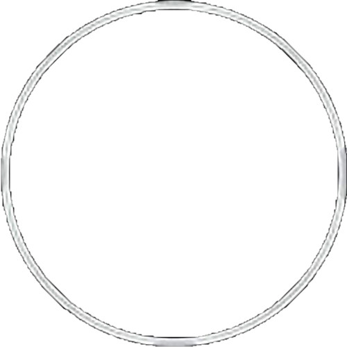 Fantasea Line Main O-Ring for FG7X and FG7XII Underwater Housings (White)