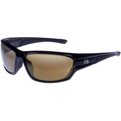 Gargoyles Havoc Polarized Mirrored Sunglasses (Black Frame, Brown/Bronze Lenses)