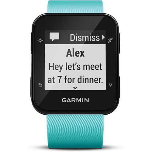 Garmin Forerunner 35 GPS Running Watch with Wrist-Based Heart Rate (Frost Blue)