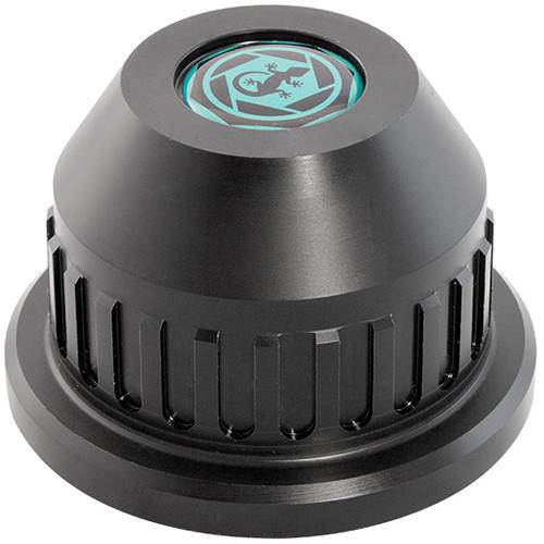 GECKO-CAM Rear Lens Caps