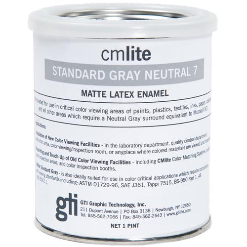 GTI Neutral Gray Paint (1 Pint)