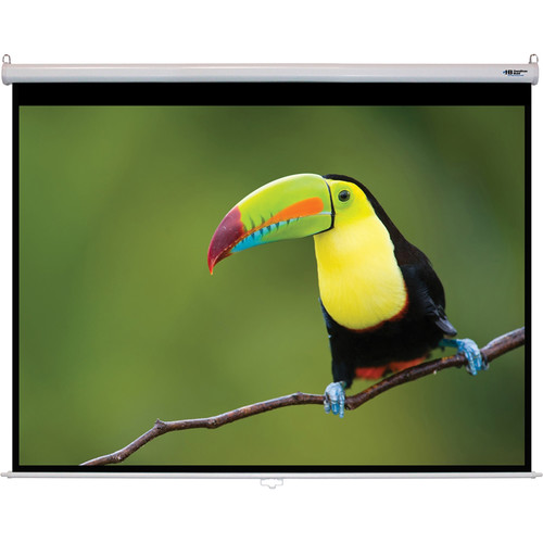 "HamiltonBuhl WS-W7296 72 x 96"" Manual Projection Screen"