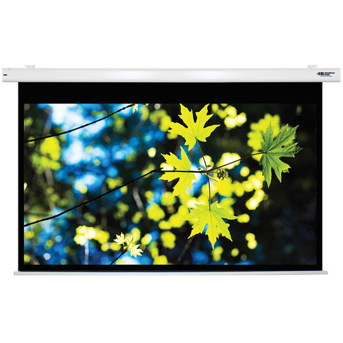 """HamiltonBuhl 100"""" Electric Projector Screen PC format Matte White"""