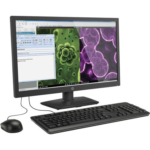 "HP 23.6"" t310 All-in-One Zero Client"