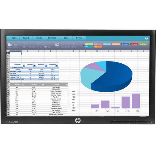 "HP P202 20"" Widescreen LED Backlit ProDisplay Monitor (Head Only)"