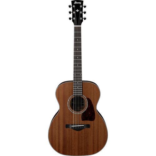 Ibanez AC240 Artwood Series Acoustic Guitar (Open Pore Natural)
