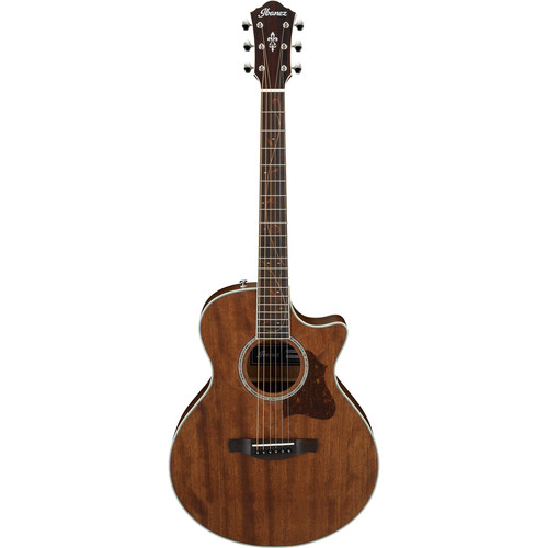 Ibanez AE245JR AE Series Acoustic/Electric Guitar (Open Pore Natural)