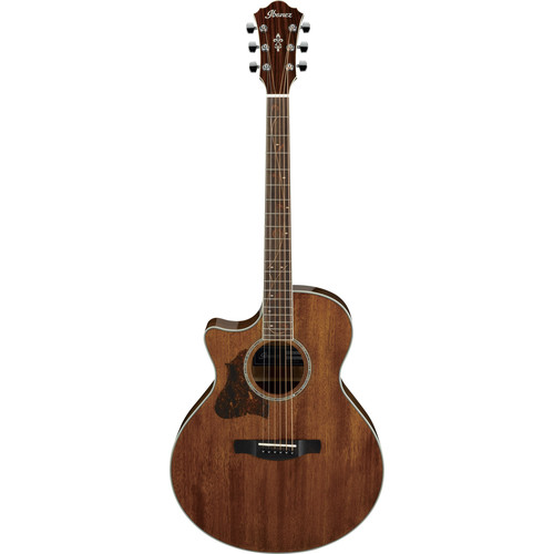 Ibanez AE245L AE Series Left-Handed Acoustic/Electric Guitar (Natural High Gloss)