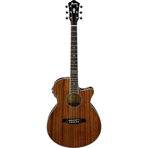 Ibanez AEG12II Acoustic/Electric Guitar (Natural)