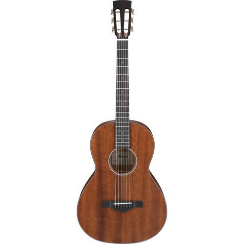 Ibanez AVN9 Vintage Parlor Acoustic Guitar (Open Pore Number)