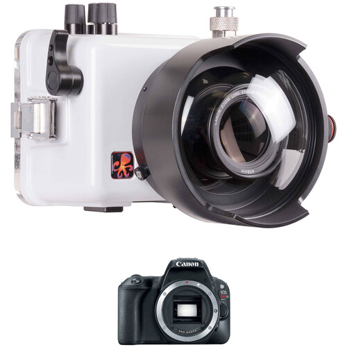 """Ikelite Underwater TTL Housing with 6"""" Dome Port and Canon EOS Rebel SL2 DSLR Camera Body Kit"""
