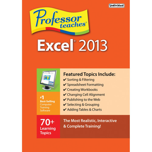 Individual Software Professor Teaches Excel 2013