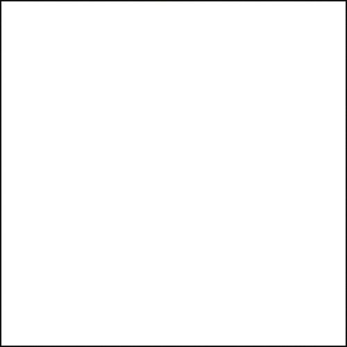 Interfit Italian Collection Background (White, 10 x 20')