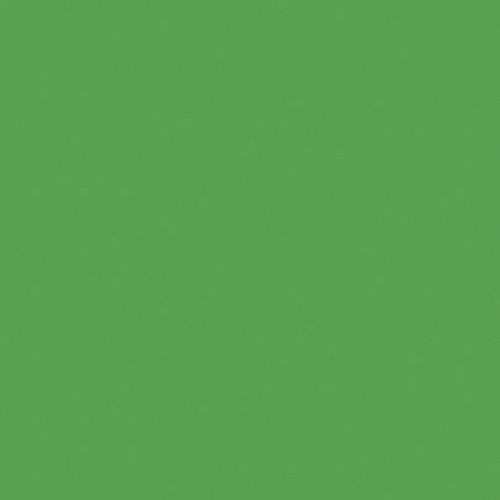 Interfit Italian Series Background (Chroma Green, 10 x 10')