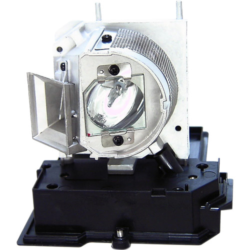 Projector Lamp EC.J9300.001