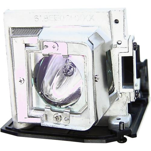 Projector Lamp EC.J9900.001
