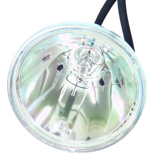 Projector Lamp RLMPF0067CEZZ