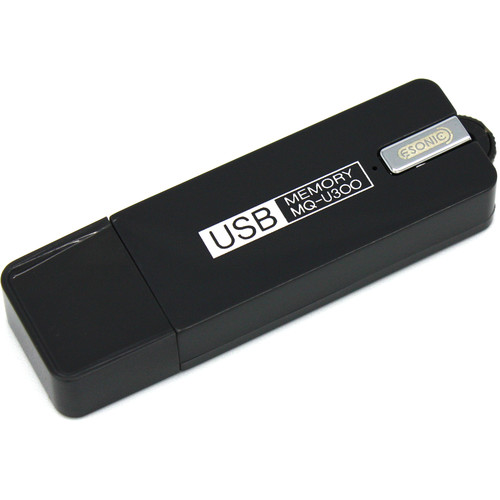 KJB Security Products USB Drive with Voice Recorder (4GB)