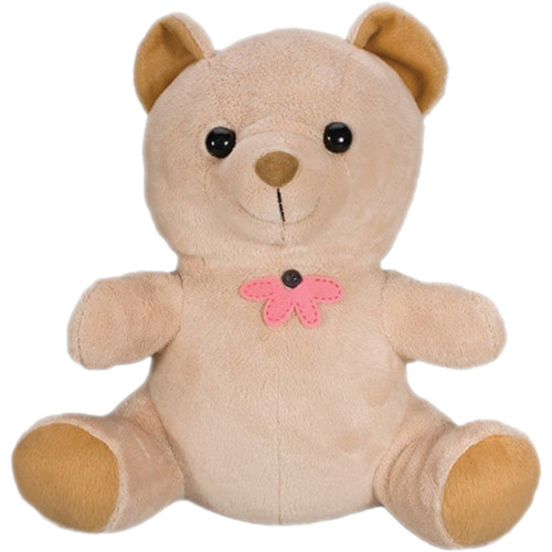 KJB Security Products SC7032 Teddy Bear Indoor Covert Color Camera with Wireless Transmitter (NTSC)