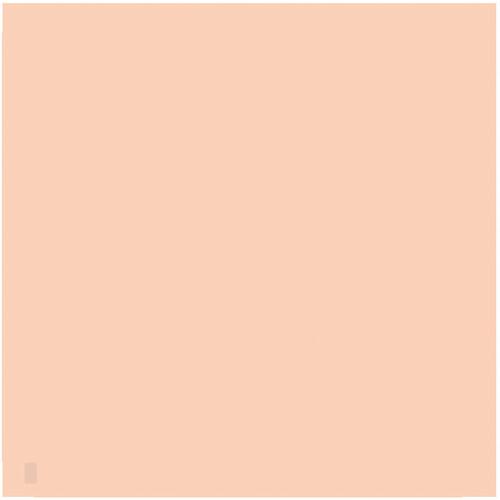 "LEE Filters 806 Zircon Warm Amber 2 Filter (24 x 24"" Sheet)"