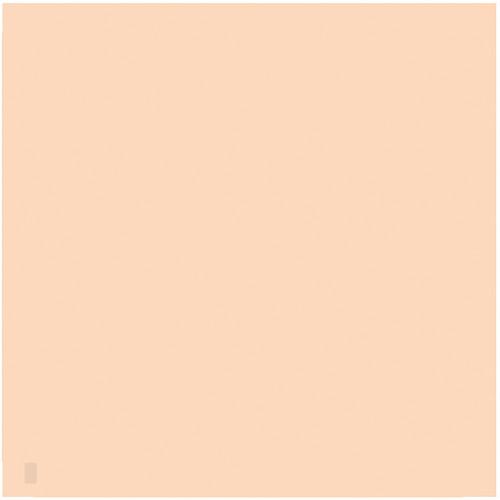 "LEE Filters 807 Zircon Warm Amber 4 Filter (24 x 24"" Sheet)"