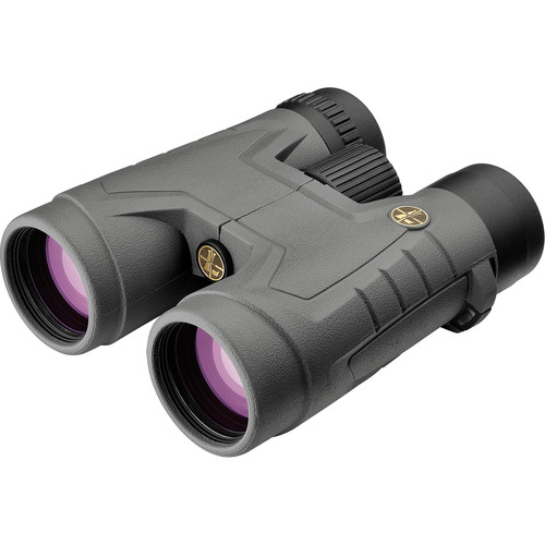 Leupold 10x42 BX-2 Acadia Binocular (Shadow Gray)