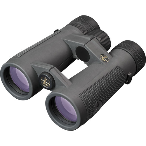 Leupold 10x42 BX-5 Santiam HD Binocular (Shadow Gray)