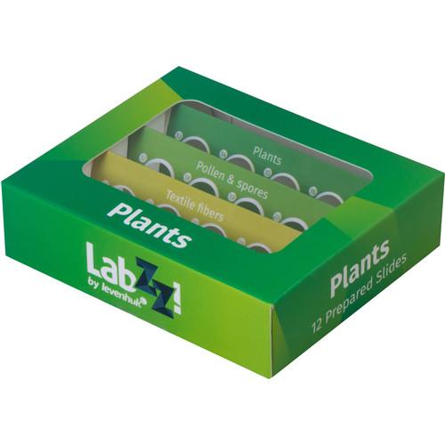Levenhuk LabZZ P12 Prepared Slide Set (Plants)