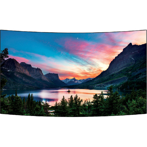 "LG 55EF5C 55"" Open-Frame Full HD OLED Signage Display (2-Pack)"