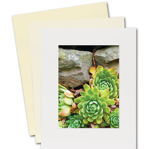"""Lineco Basics 4-Ply Standard Fame Size Buffered 100% Rag Gallery Mat Board (25 Sheets, 11 x 14"""", White)"""