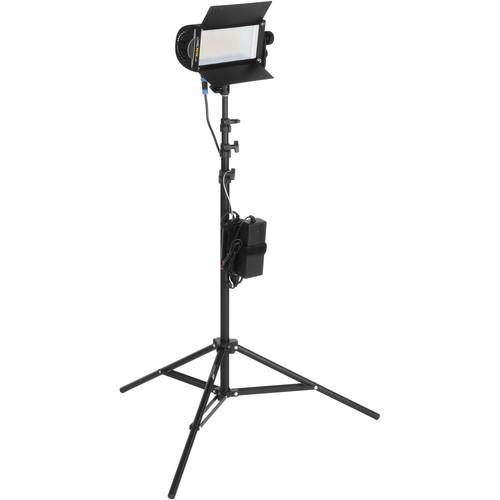 Lowel TotaLED Daylight LED 1-Light Kit
