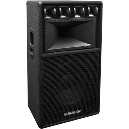 "Marathon DJ-153 15"" Three-Way Loudspeaker"