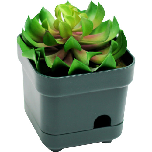 Mini Gadgets OmniEye Artificial Plant with Covert Camera