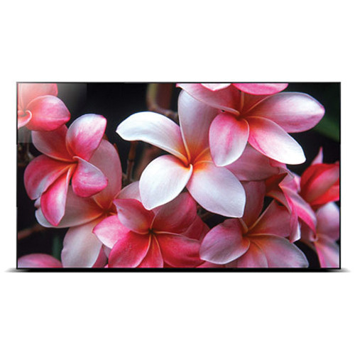 "Orion Images RNK Video Wall Series 46"" LED Backlight LCD Full HD AV Wall Monitor (Black)"
