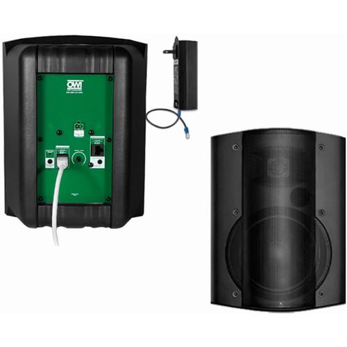 OWI Inc. 2 Each Amp-Cat602B Speaker (Black)