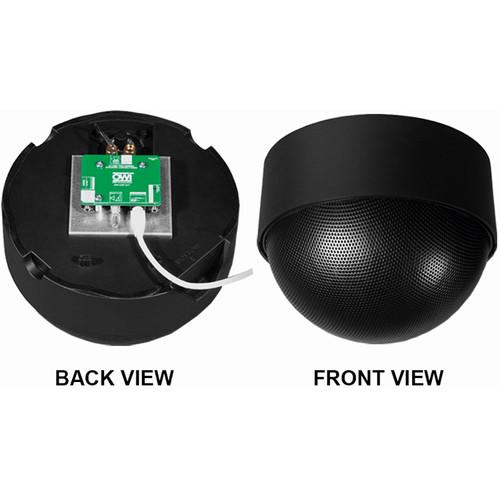 OWI Inc. 1 Each - Amp-Cat-Neptune Speaker (Black)