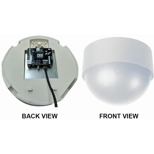 OWI Inc. 1 Each - Amp-Cat-Neptune Speaker (White)