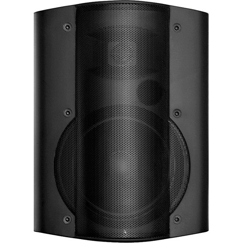 OWI Inc. Self-Amplified, Surface Mount, Low-Voltage Speaker Combo (Black)