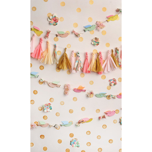 PepperLu PolyPaper Photo Backdrop (5 x 7', Birds and Streamers Pattern)