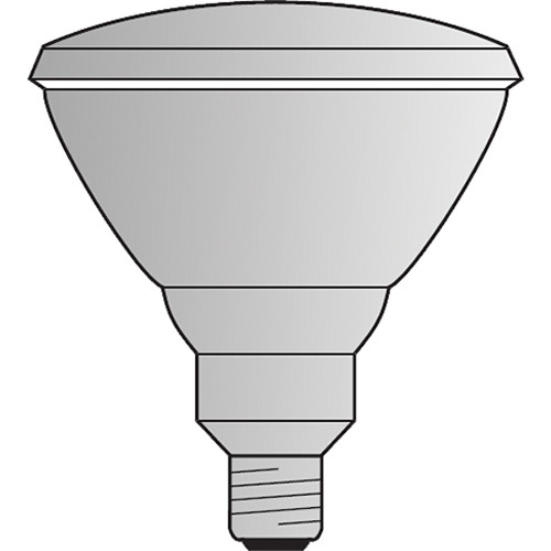 Philips SP PAR 38 Lamp (250W/125V)