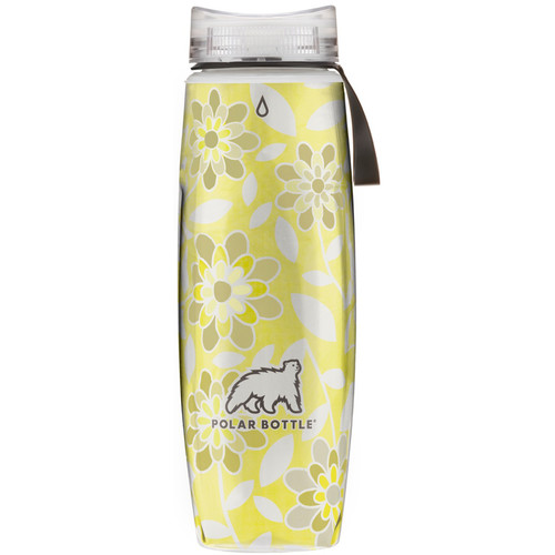 Polar Bottle Ergo Insulated Water Bottle (22 fl oz, Silver and Gold)