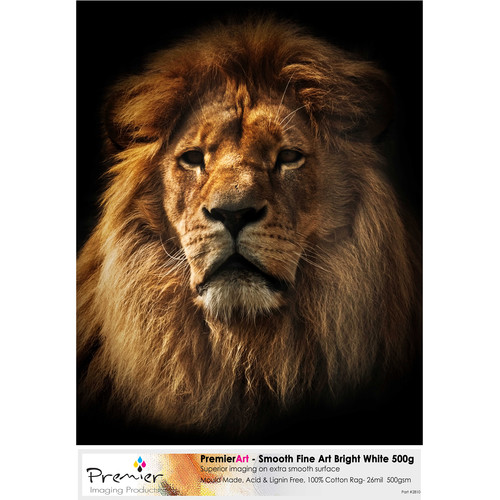 """Premier Imaging Smooth Fine Art Bright White Paper (500 gsm, 17 x 22"""", 20 Sheets)"""