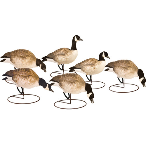 PRIMOS Final Approach HD Field Lessers Decoys (6-Pack)