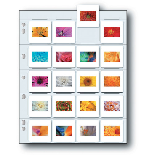 Print File Unprinted Storage Page for Twenty 35mm Mounted Transparencies (500-Pack)