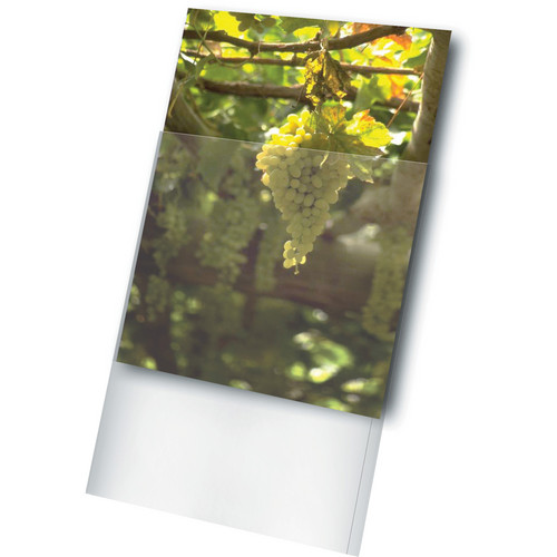 "Print File Archival Storage Standard Photo Sleeve for 11 x 17"" Print (100-Pack)"