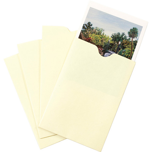 "Print File NP46 4 x 6"" Buffered Print Envelope (100-Pack)"