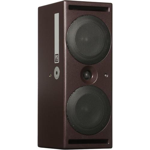 PSI AUDIO A214-M Powered Center-Channel Studio Monitor (Single, Black)