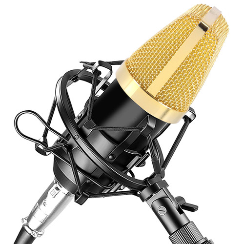 Pyle Pro PDMIC71 Cardioid Condenser Microphone Kit for Recording & Broadcasting
